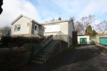 Detached Bungalow in Kringtep Blebo Craigs...