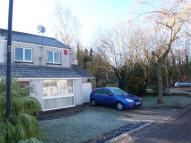 semi detached property to rent in Stevenson Place...