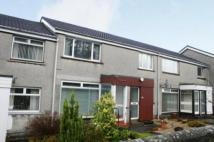 Flat to rent in Polmont Park , Polmont...