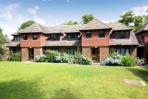 Ground Flat for sale in Beacon Road, Crowborough...