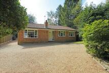 3 bedroom Detached Bungalow for sale in Harlequin Lane...