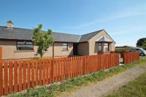3 bedroom semi detached home in Redcastle, Inverkeilor...