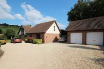 5 bedroom Detached home for sale in Portland Place...