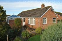 3 bedroom Detached Bungalow in Ash Tree Close...