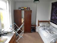 House Share in Trekeen Road, Penryn
