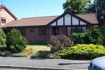 Detached Bungalow to rent in Grenfell Park Parkgate