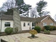 Detached Bungalow for sale in Menlo Close, Oxton...