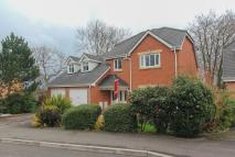 4 bedroom property in Cwrt Y Cadno, Cardiff