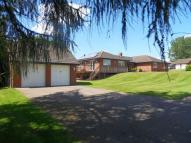 4 bed Detached Bungalow for sale in Phocle Green