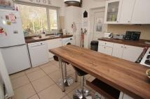 2 bed Semi-Detached Bungalow to rent in Statham Avenue, Lymm...
