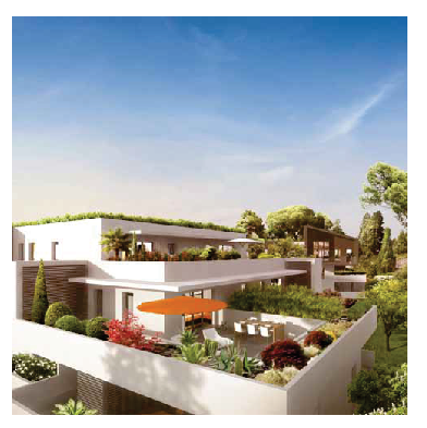 Vast terraces