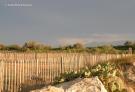 Toreilles beach
