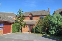 Detached property to rent in Abbotsridge Drive, Ogwell