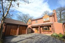 Detached house to rent in Brake Close...