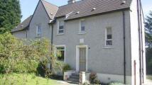 3 bedroom semi detached property to rent in Hillcrest Road ...
