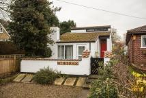 1 bed Detached Bungalow for sale in St Giles Road, Skelton...