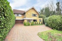 6 bedroom Detached property in West Road, Ealing, W5