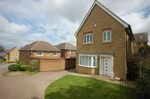 Detached property to rent in Redwood Close Chartham
