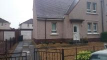 3 bed semi detached home for sale in Riddell Street...