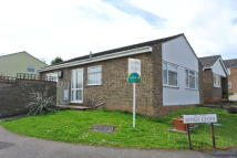 2 bed Detached Bungalow in Kings Close, Lawford...