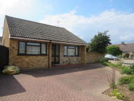3 bedroom Detached Bungalow to rent in Seaton Close, Lawford...