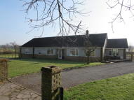 3 bed Detached Bungalow to rent in Mill Lane, Bradfield...