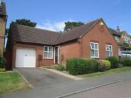 2 bed Detached Bungalow to rent in Primula Close...