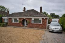 Detached Bungalow for sale in Grovebury Road...