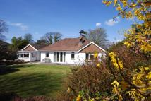 Detached Bungalow for sale in Cowes