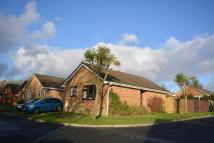 2 bed Detached Bungalow for sale in Westway, Northwood