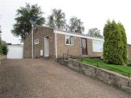 Detached Bungalow to rent in Darley Abbey Drive...