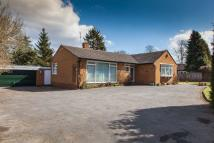 Detached Bungalow in Lloyd Road, Tettenhall