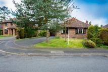 Detached Bungalow to rent in Chilgrove Gardens...