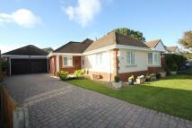Detached Bungalow for sale in Verne Road, Verwood