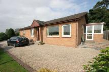 Detached Bungalow for sale in 7 Hallyards Cottages...