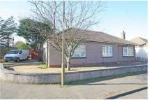 42 Farrer Terrace Detached Bungalow for sale