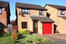 13 Clufflat Brae Detached house for sale