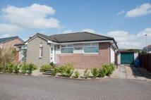 Detached Bungalow for sale in Doo'Cot Brae, Alloa, FK10