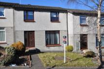 Terraced property for sale in Parkhead Court, Alloa