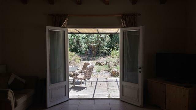 view into garden
