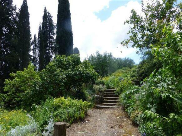 part of the garden