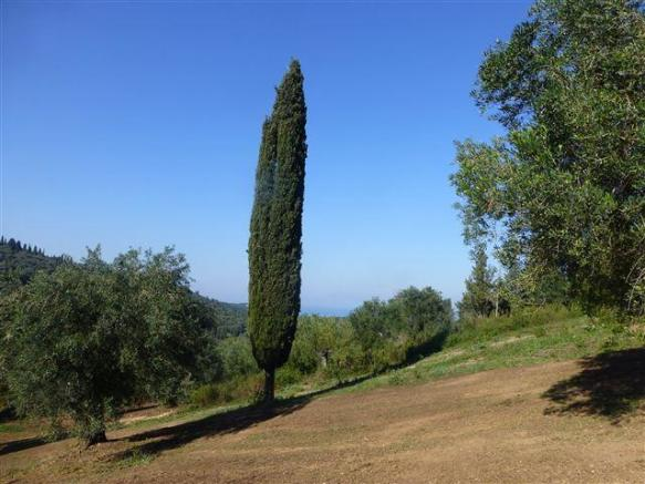 land and view