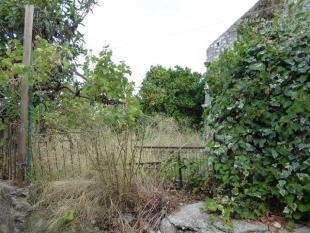 building and overgrown garden