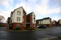 Flat to rent in Maes Deri, Ewloe
