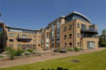 2 bedroom Apartment to rent in The Downs, Wimbledon