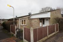 Bungalow to rent in Mill Green Place, Pitsea...