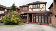 5 bed Detached house in Primrose Close...