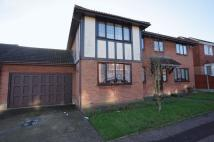 1 bedroom Detached home to rent in Chestnut Grove, Benfleet