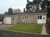 Detached Bungalow in Firs Way, Brandon, IP27