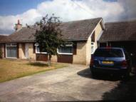 3 bed Detached Bungalow to rent in Holmsey Green, Beck Row...